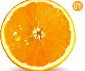 Juicy slice oranges vector set 02