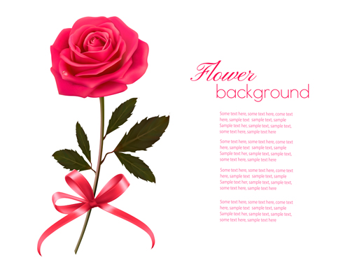 pink rose beautiful background vectors 02 - vector background