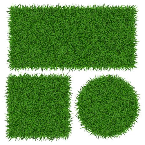 Vector banner green grass design