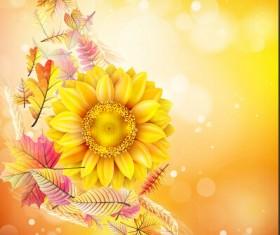 Beautiful sunflowers golden background set vector 01