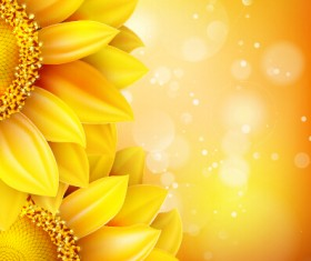 Beautiful sunflowers golden background set vector 05
