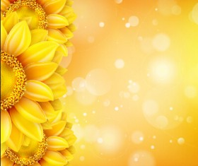 Beautiful sunflowers golden background set vector 11