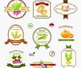 Creative vegetables labels vintage vector 01