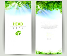 Green leaves with sunlight banners vector material 01