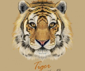 Realistic tiger art background vector