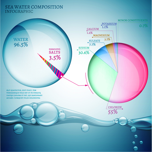 Sea water composition infographic vector 01