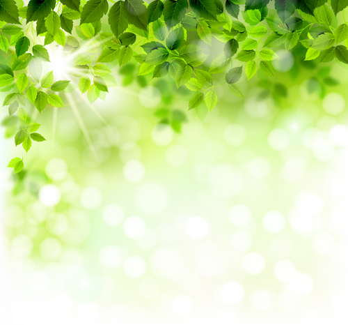Spring Green Leaves And Flowers Background With Plants: Sunlight With Green Leaves Shiny Background Vector 01 Free