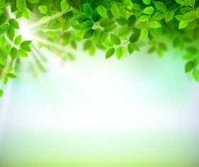 Sunlight with green leaves shiny background vector 02