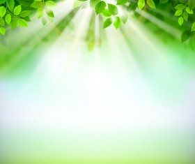 Sunlight with green leaves shiny background vector 03