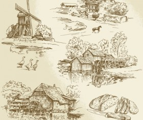 Farm and poultry hand drawn vector 02