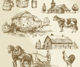 Farm and poultry hand drawn vector 04