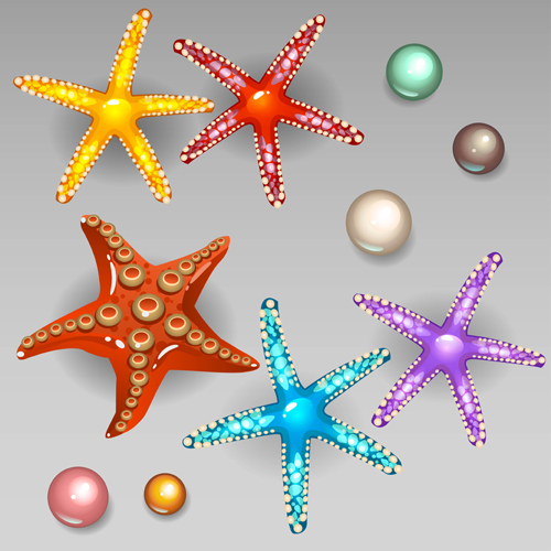 Starfish with pearls shiny vector