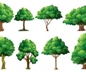 Various tree vectors material set 03