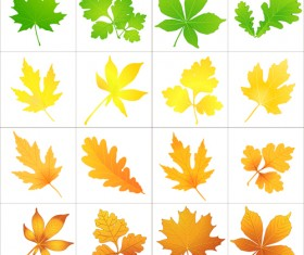 Beautiful autumn leaves icons vector 02