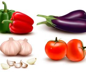 Green pepper,Eggplant,Tomato with Garlic vector 01
