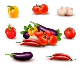 Green pepper,Eggplant,Tomato with Garlic vector 02