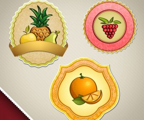 Lemonade with grapes and pineapple vector labels