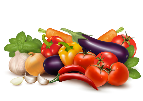 Various vegetable vector art background 01 free download