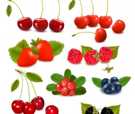 Vivid berry design elements vector 02