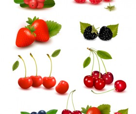Vivid berry design elements vector 03