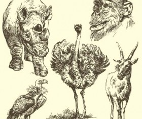 Wild animals hand drawing vectors set 12