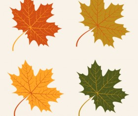 4 Kind autumn leaves vector material