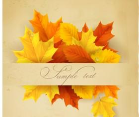 Beautiful autumn leaves background art vectors 02