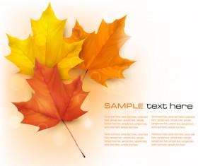 Beautiful autumn leaves background art vectors 03