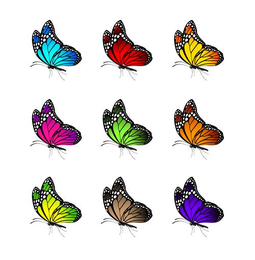 Beautiful butterflies vector icons set 01