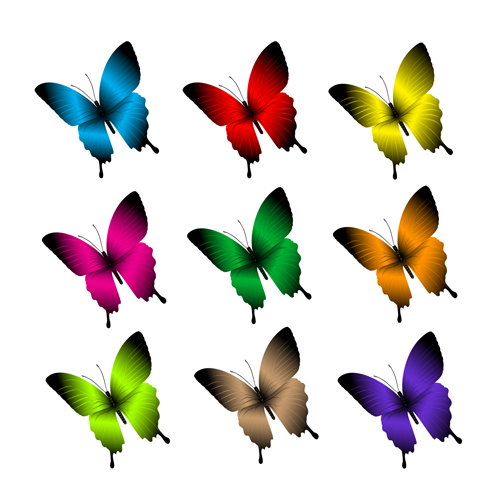 Beautiful butterflies vector icons set 02