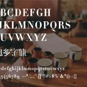 Link toDidot font