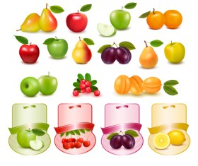 Different fruits with labels vectors