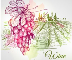 Grape and farm hand drawing vector material
