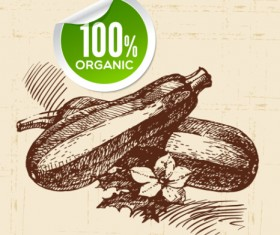 Hand drawn vegetables with organic sticker vector 01