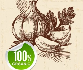 Hand drawn vegetables with organic sticker vector 03