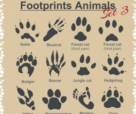 Various footprints animals design vectors 01