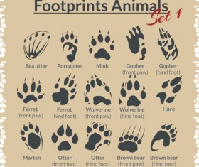 Various footprints animals design vectors 06