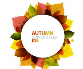 Autumn leaves frame vector background