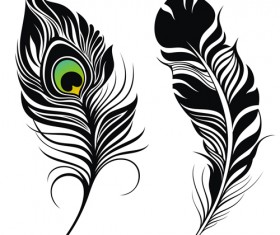 Feather abstract vectors material 01