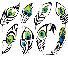Feather abstract vectors material 03