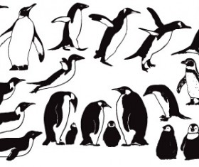 Penguin cute vector and Photoshop shapes