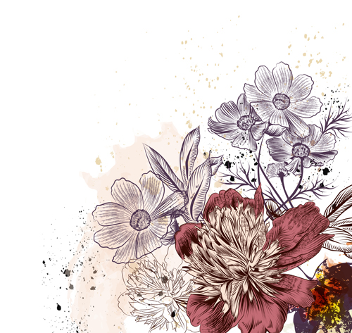 Peony And Cosmos Flowers Vector Illustration Free Download