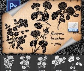 Beautiful flowers Photoshop brushes