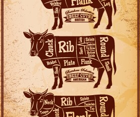 Beef cuts labels vector