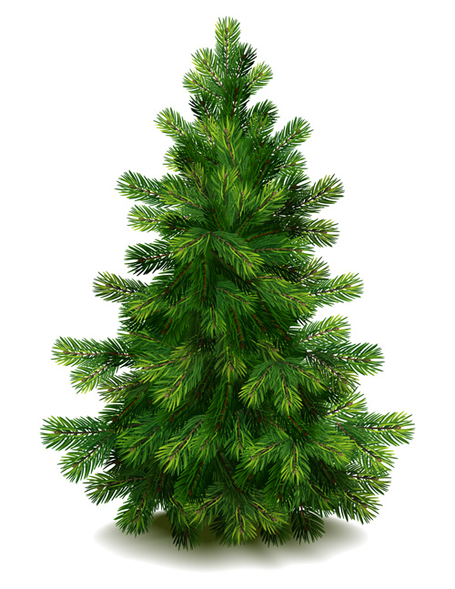 Christmas Green Fir Tree Vector Material 05 Free Download