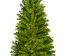 Christmas green fir-tree vector material 06