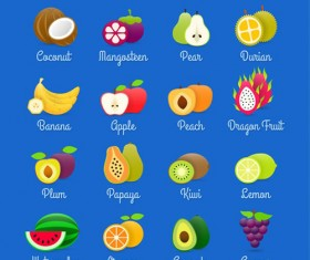 Exquisite fruit icon vector