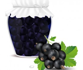 Fresh jam with Jar and fruits vector 02