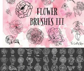 Hand drawn flowers Photsohop brushes