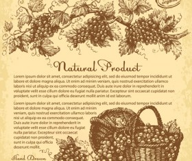 Hand drawn grapes background vintage vector 01